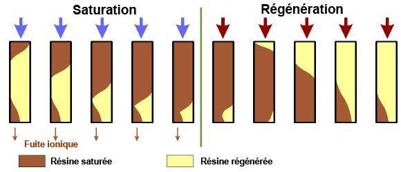 regeneration resine adoucisseur